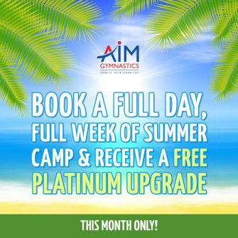 aim-promotion-summer-camp-upgrade